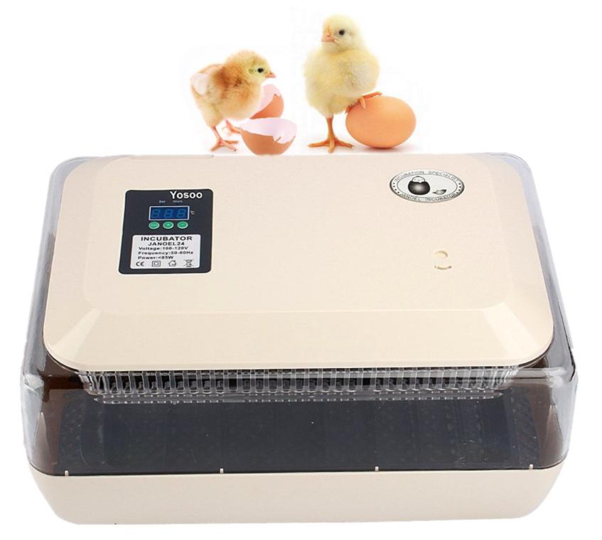 precio de incubadora para huevos de gallina