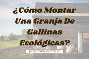 🥇 Monta Tu Granja de Gallinas Ecológicas 【シ】¡ GANA € !