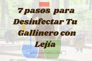 ▷ Desinfecta tu Gallinero con Lejía en 7 Pasos 【PRO】